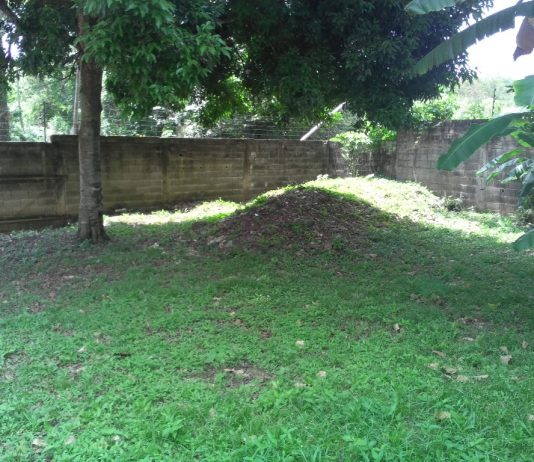 Parcela, Terrenos para construcción