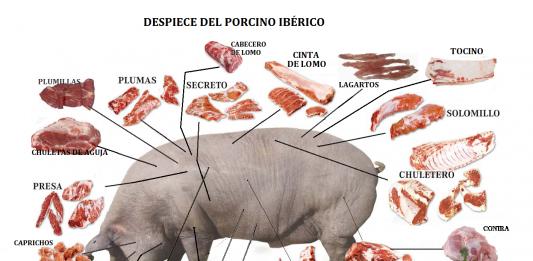 Despiece del cerdo