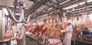 Industria de la carne