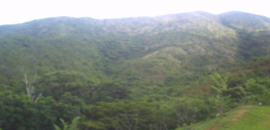 🍀 EI008. Finca en venta en Belén, Sector La Yagua, Carabobo