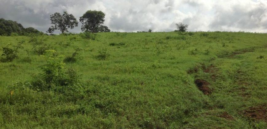 En Venta Finca en el Sector San Juan, Yaracal, Falcón