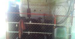 JAG-400 Granja Avícola – Tinaquillo, COJEDES