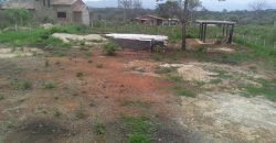 💎 Terreno en Safari Ranch. Incluye proyecto.